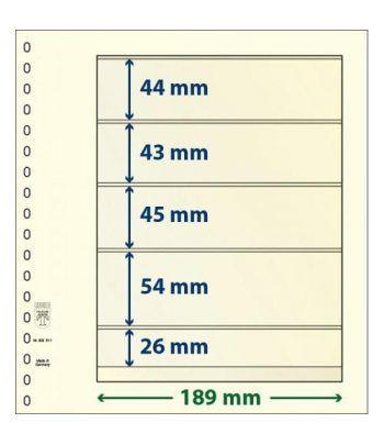 LINDNER Hojas clasificadoras T-Blanko 802511  - 2