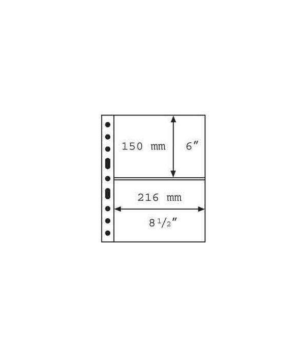LEUCHTTURM GRANDE 5 hojas transparentes con 2 departamentos. Album billetes - 2