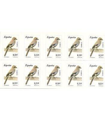 4379 Fauna y Flora (2008) ARRENDAJO (hoja de 10 sellos)  - 2